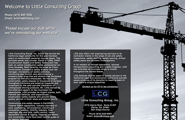 Little Consulting Group Landing Page